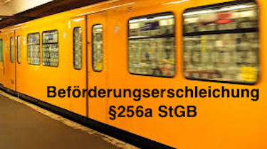 §256a StGB